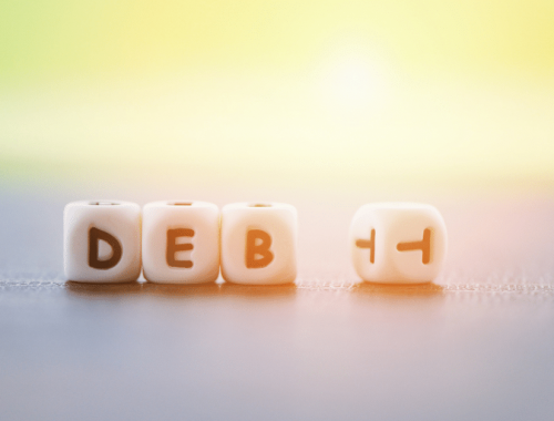 Minimize Debt – Borrow Only What You Need